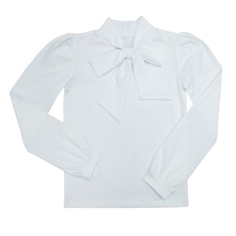Блузка Модель 495